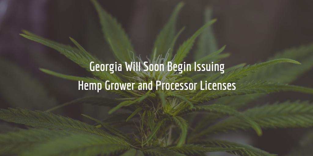 Georgia hemp processor license requirements